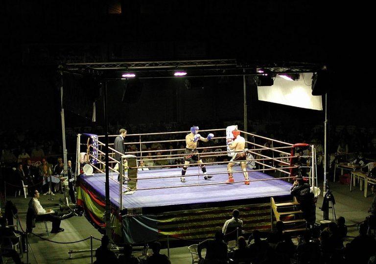 focos de alquiler para boxeo en valencia