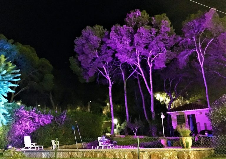 jardines-iluminados-con-luces-de-alquiler