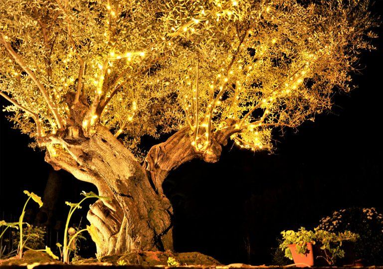 iluminación para boda en valencia
